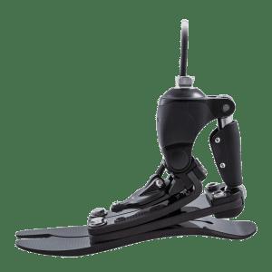 prosthetic foot - foot amputation